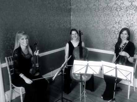 Vanity Strings Trio at Nonsuch Manor, Cheam